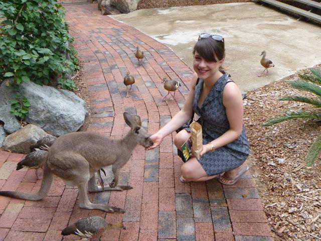 Aussie Trip and Veggie Challenge