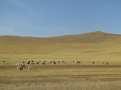 Mongólia – Parte I - Passeio pelo interior.