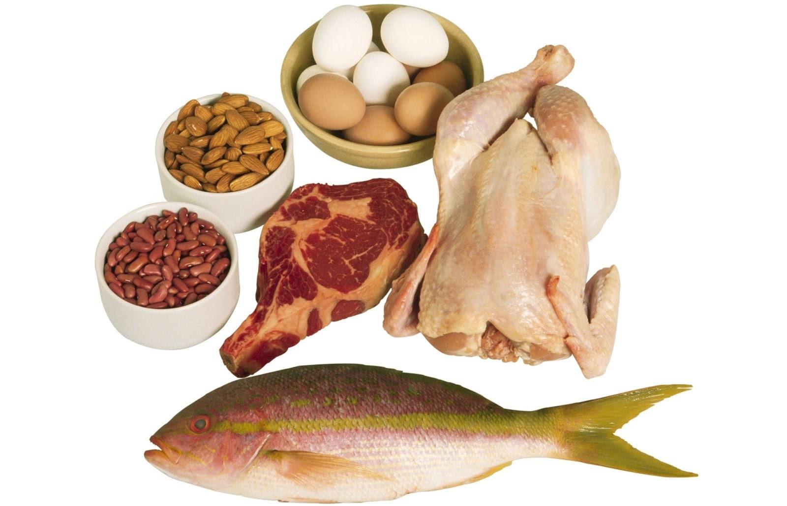 Programa Bem Estar - Assunto: Ingestão de proteína
