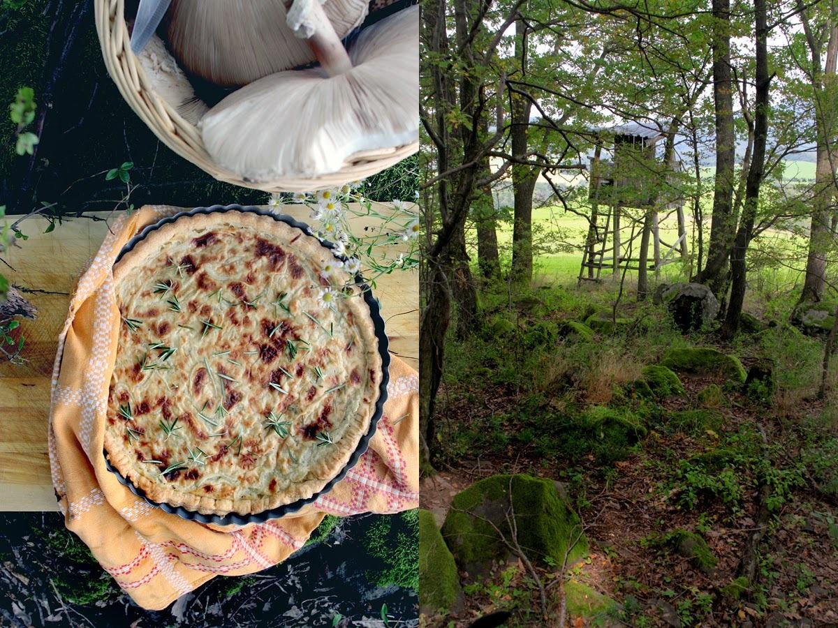 Obed v prírode / Outdoor lunch