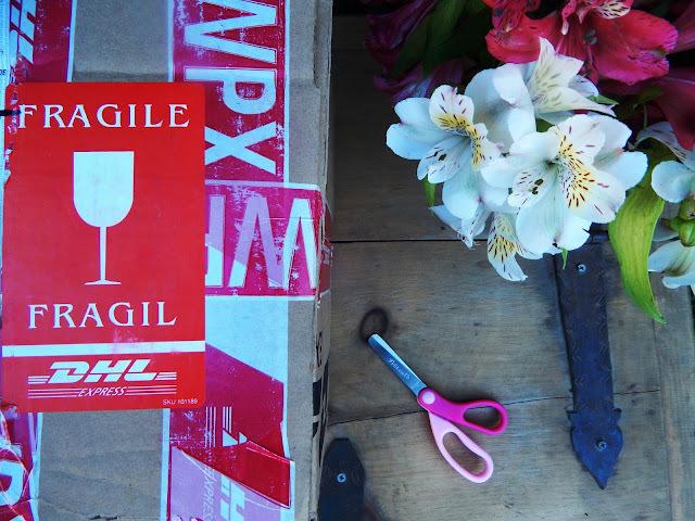 Gift Swap Círculo de Bloggers México