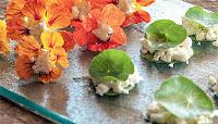 Do Jardim para  a Mesa: Flores Comestíveis - Receitas