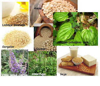 Reposição hormonal natural