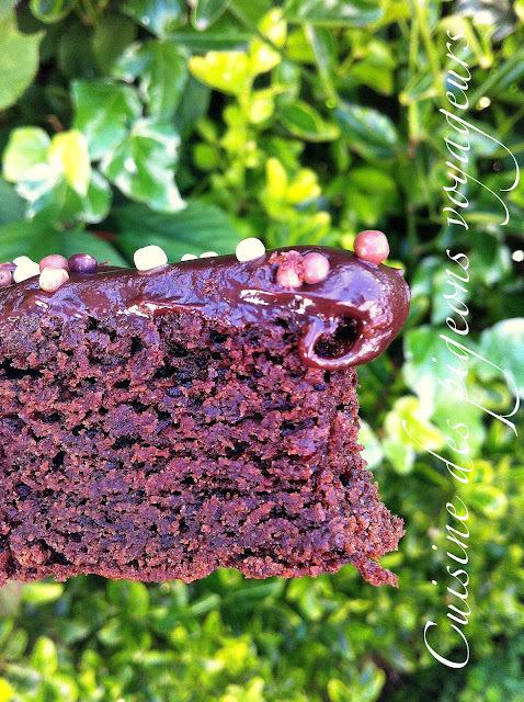 Gâteau au Chocolat...Moelleux...Délicieux!