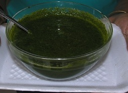 Green Coriander and Mint Chutney