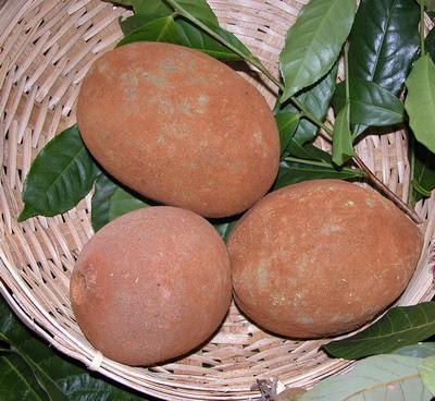 Mousse de cupuaçu com caramelo mesclado