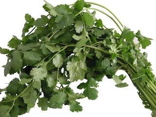 pasta al cilantro