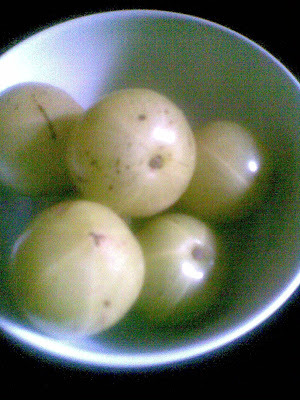 Amla  Curd Pachadi & Amla Pickle