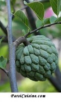 "Sitaphal Pudding aka ""Sugar Apple"" or ""Custard Apple"" Pudding"