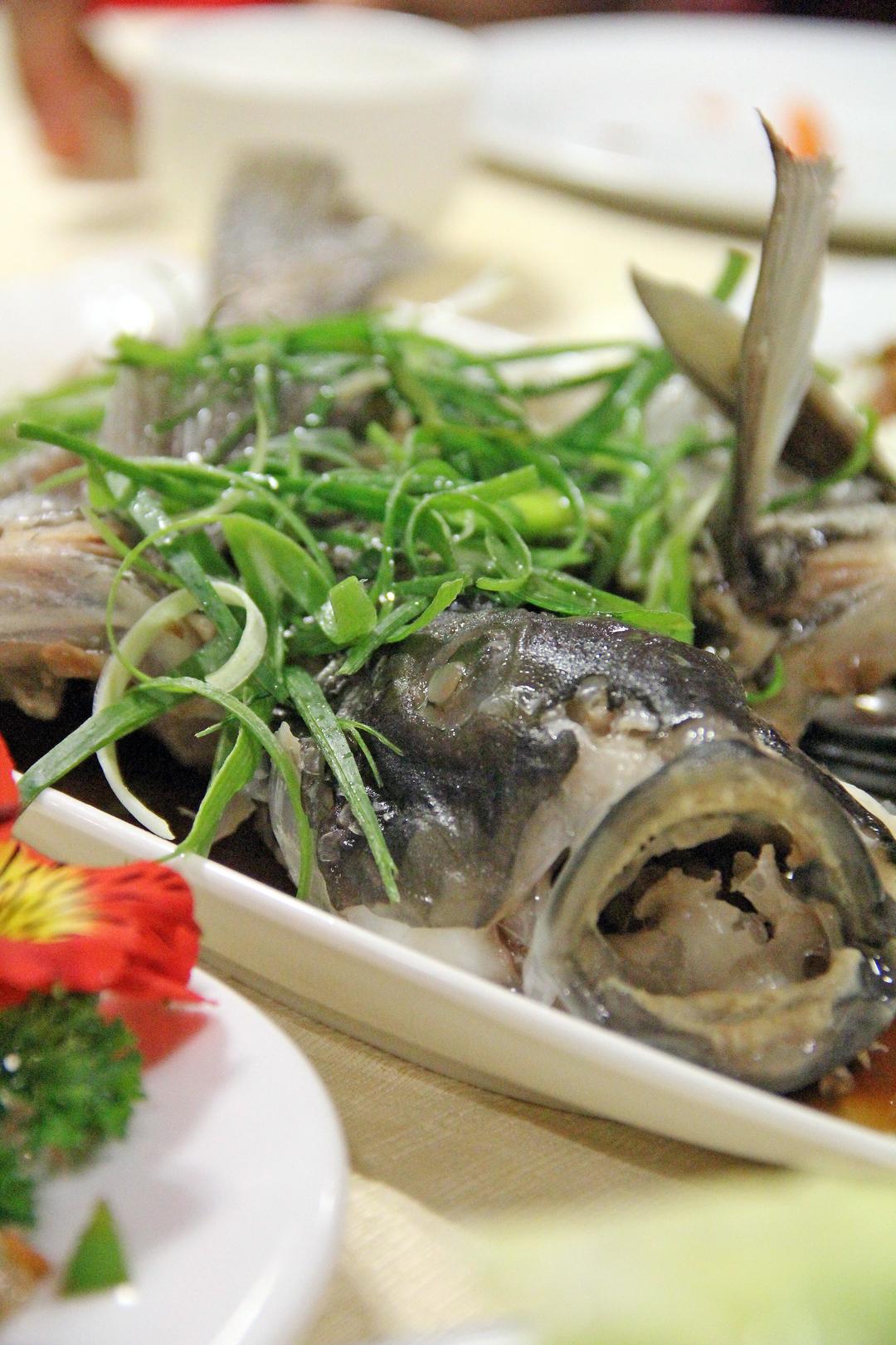 Lucky Seafood Restaurant (Somerville, Manukau)