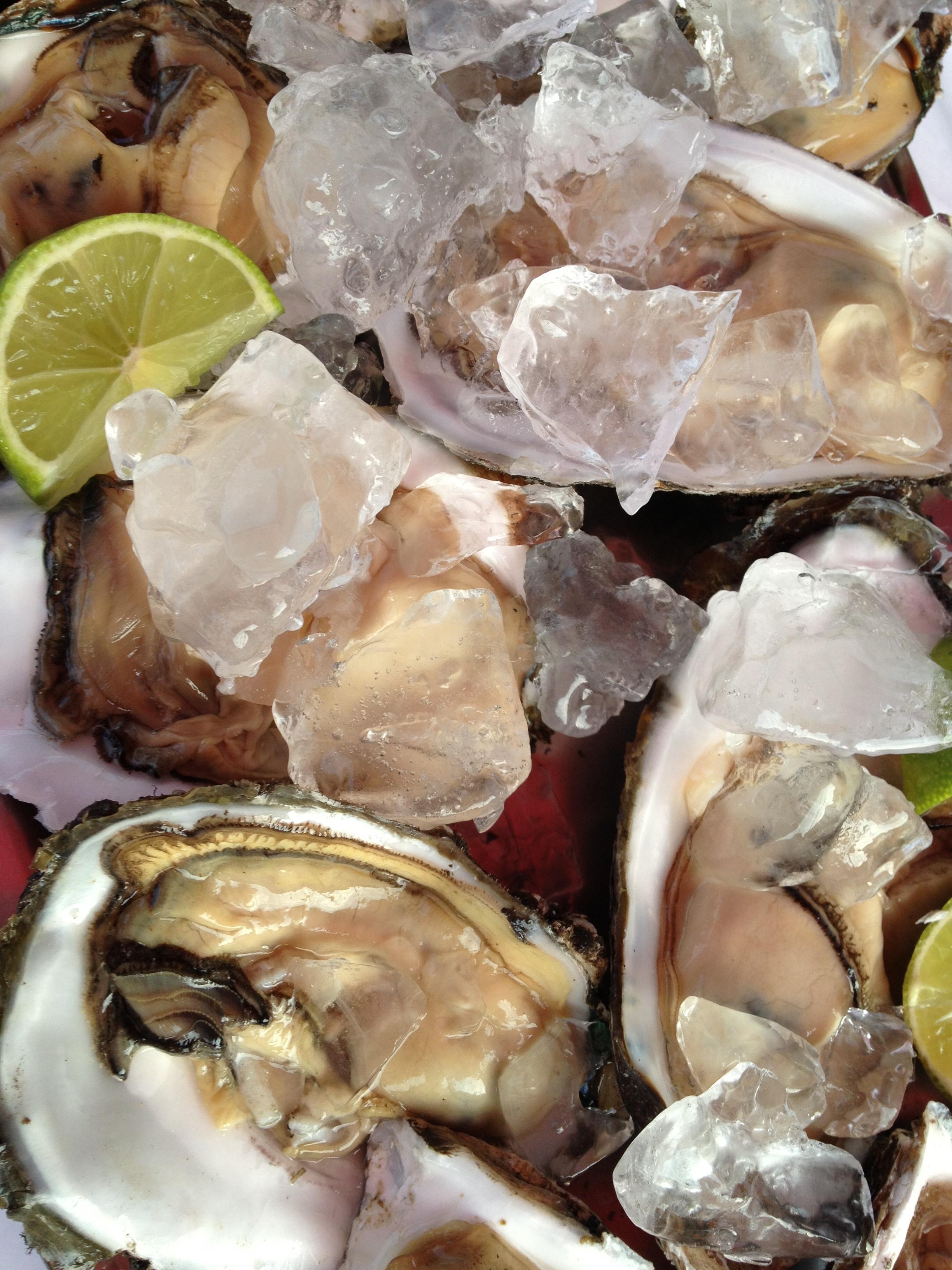 Moqueca Mista,  Peixe e Frutos do Mar