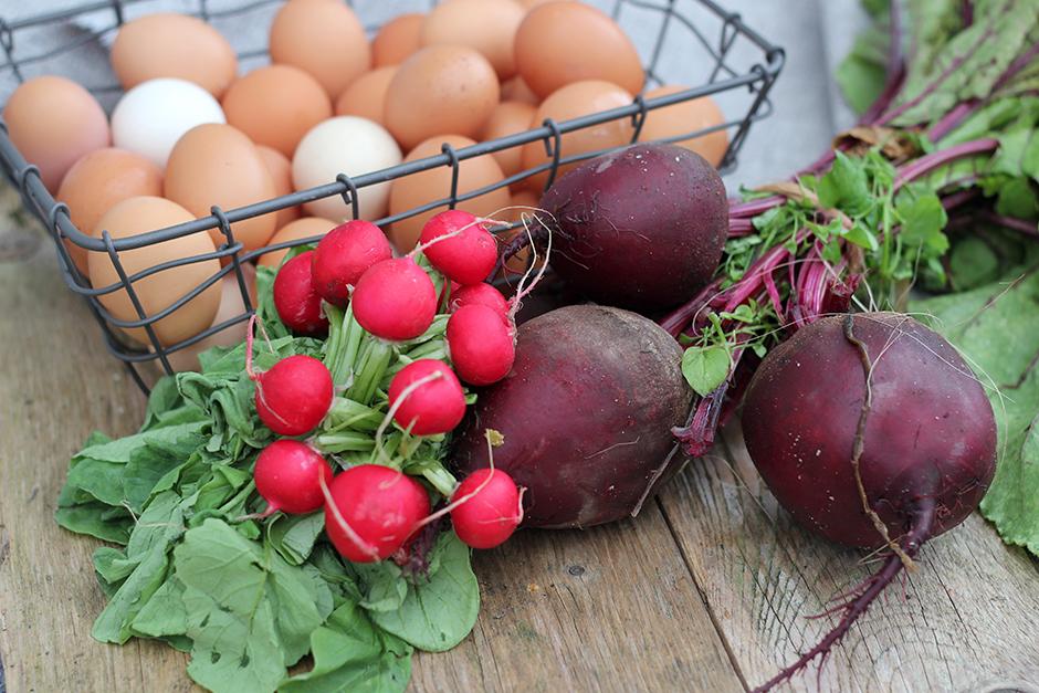 8 tips för en god tarmflora
