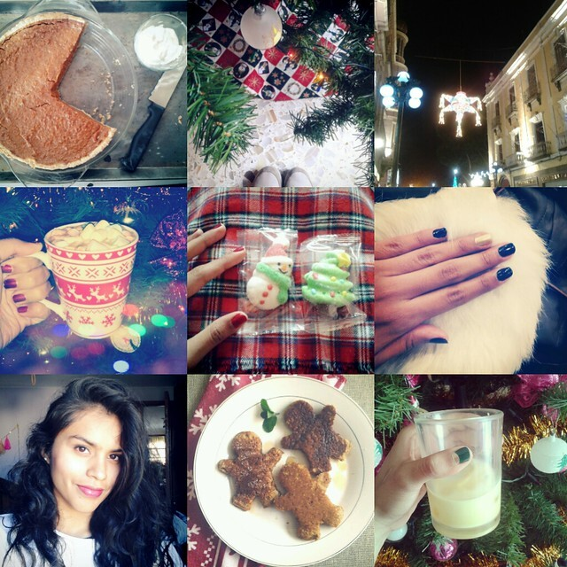 Instagram Diaries {Holiday season}