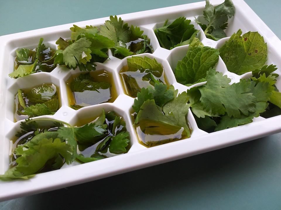 Congelar hierbas frescas para conservarlas