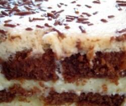 de bolo gelado com bolo puma de chocolate