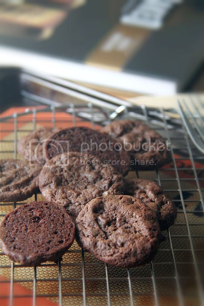 cream cheese chocolate snacking cookies.