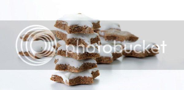 Zimtstern biscoito estrela de canela