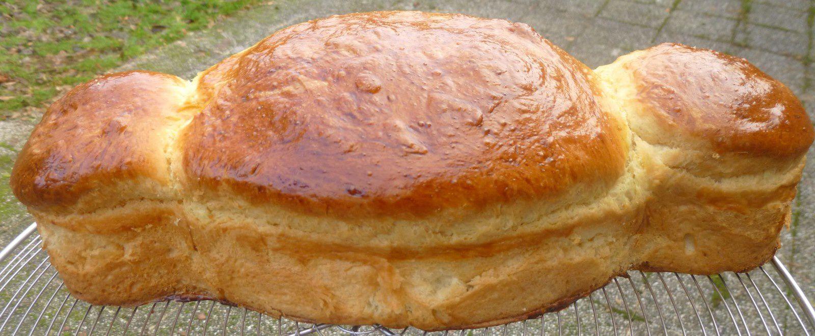 coquille de Noël (en pain gâteau de ch'Nord)