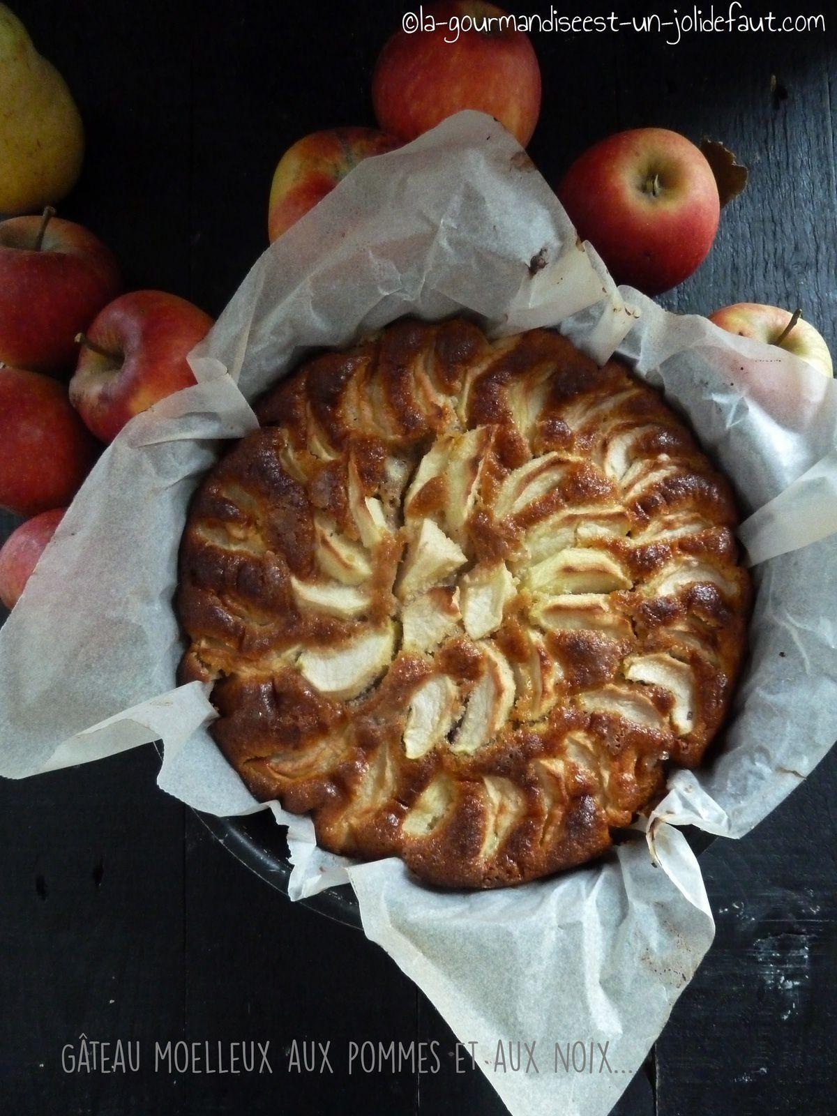Gateau moelleux aux pommes et aux noix