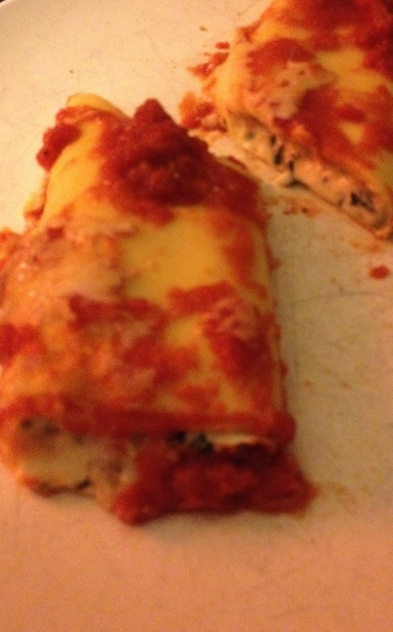 cannelloni etchebest