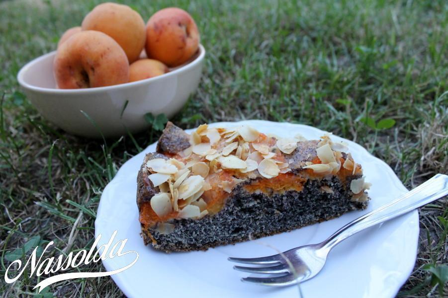 Sárgabarackos-mákos süti