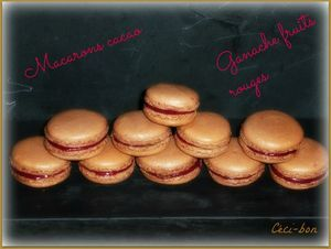 Macarons cacao/ganache fruits rouges