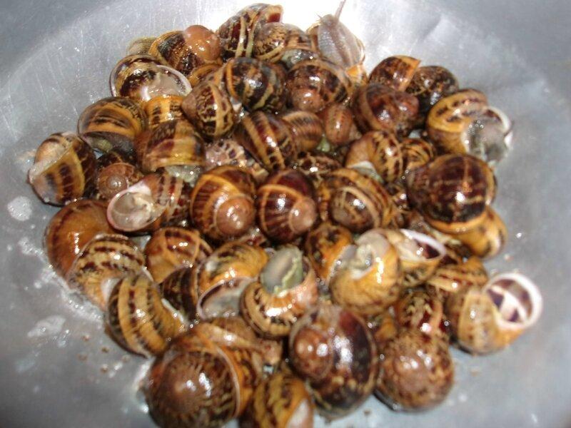 escargot à la bordelaise