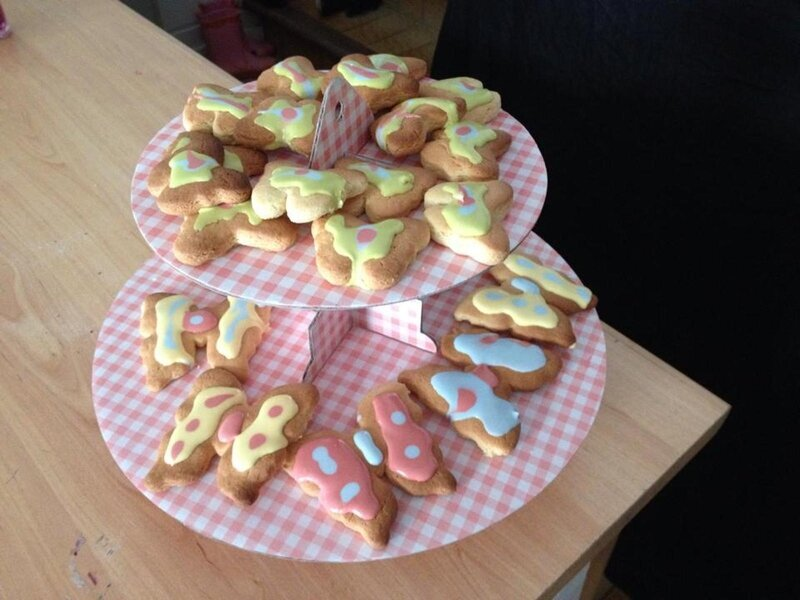 Biscuits papillons de Féli