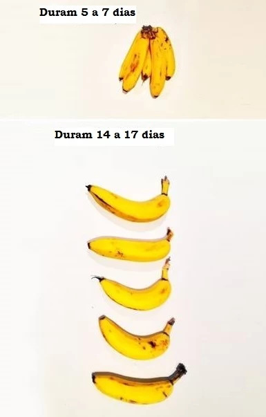 banana em conserva