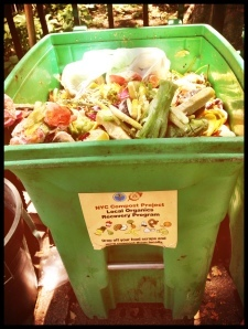 Food Scraps- What are you Collecting?
