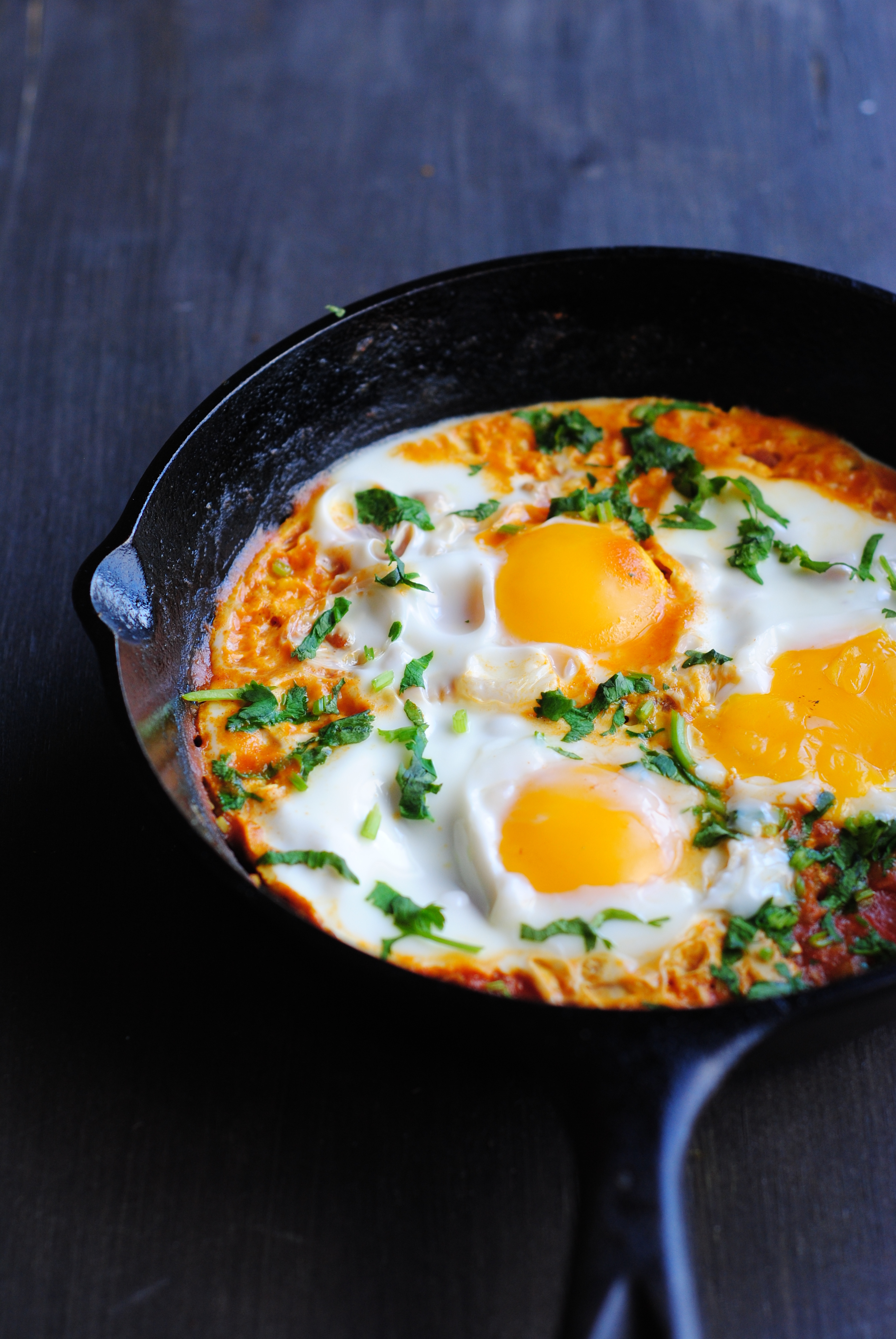 Bidding  a fond goodbye to Calcutta's Jewish community with Shakshuka