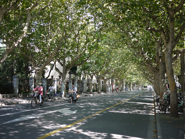Self-guided walking tour: Shanghai's Former French Concession Area