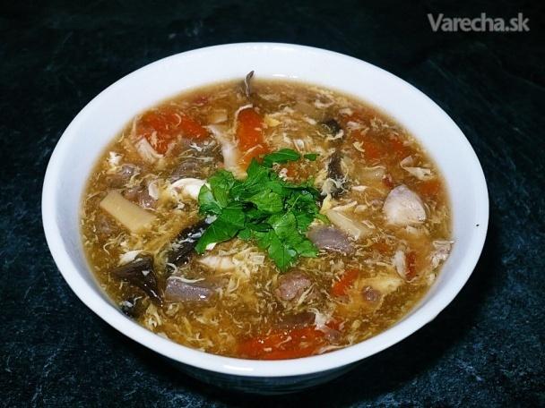 Čínska ostro-kyslá polievka (fotorecept)