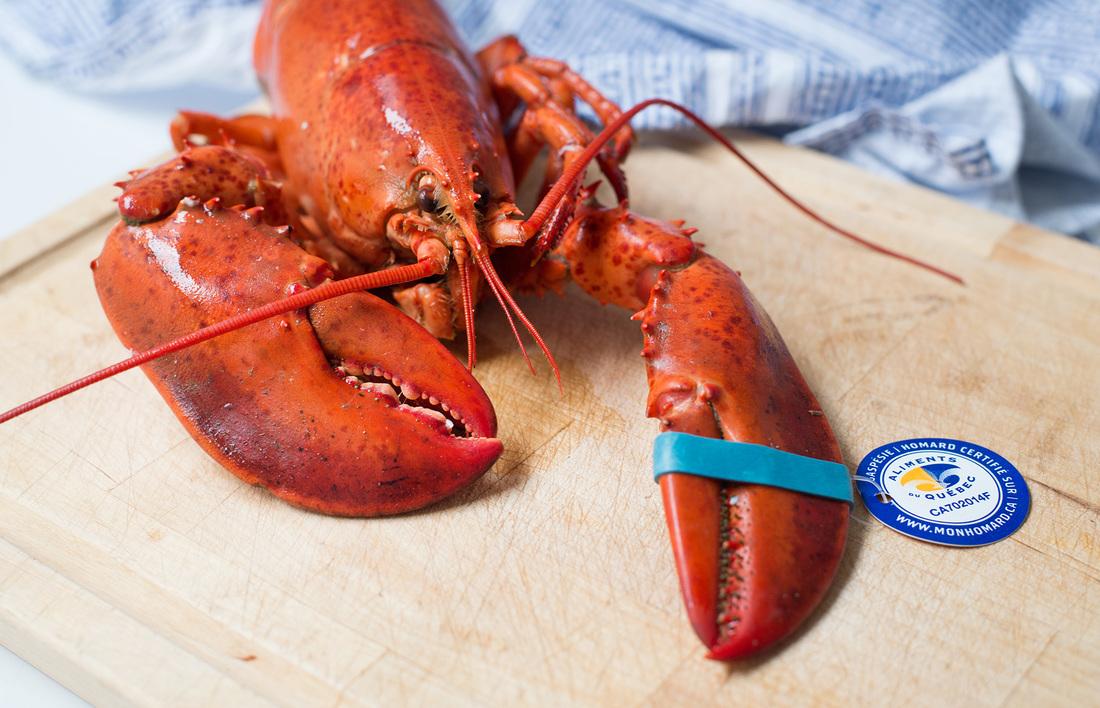 Dans la cuisine // Gratin de homard