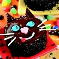 Mini torta gato