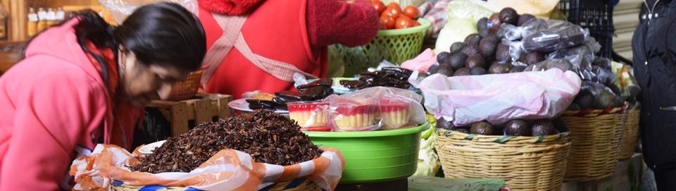 Por los mercados de Oaxaca #OaxTrip2015