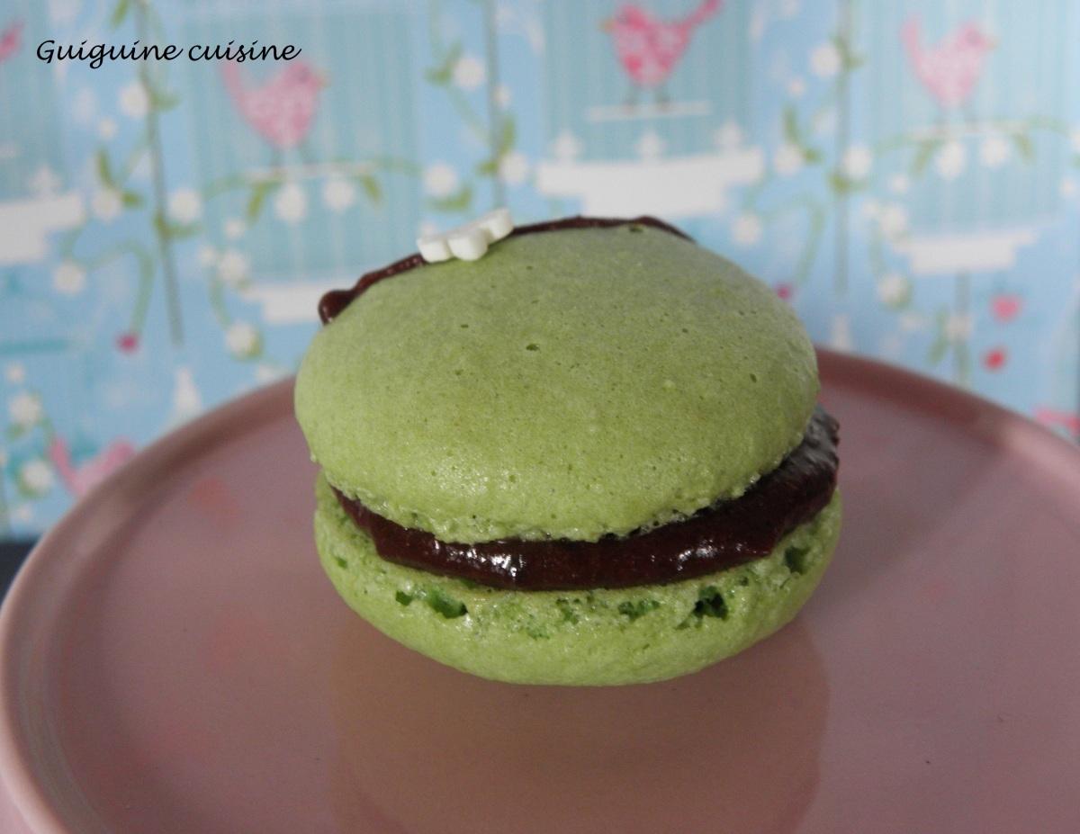Macaron menthe – chocolat…