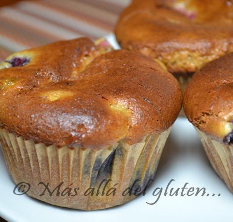 Muffins de Mantequilla de Nueces y Frutas (Receta SCD Y GFCFSF)