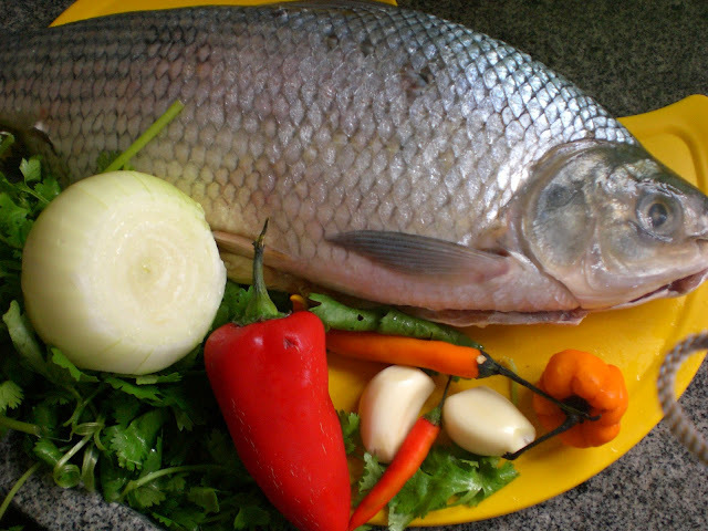de peixe namorado assado no forno com escamas e cabeça