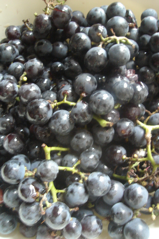 Geleia de uva pretinha (Santa Isabel)