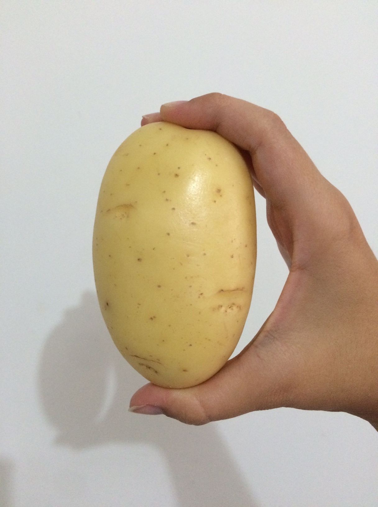 Filé com batatas rústicas ao forno – Básico I