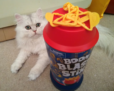 The Kittens Play Boom Blast Stix