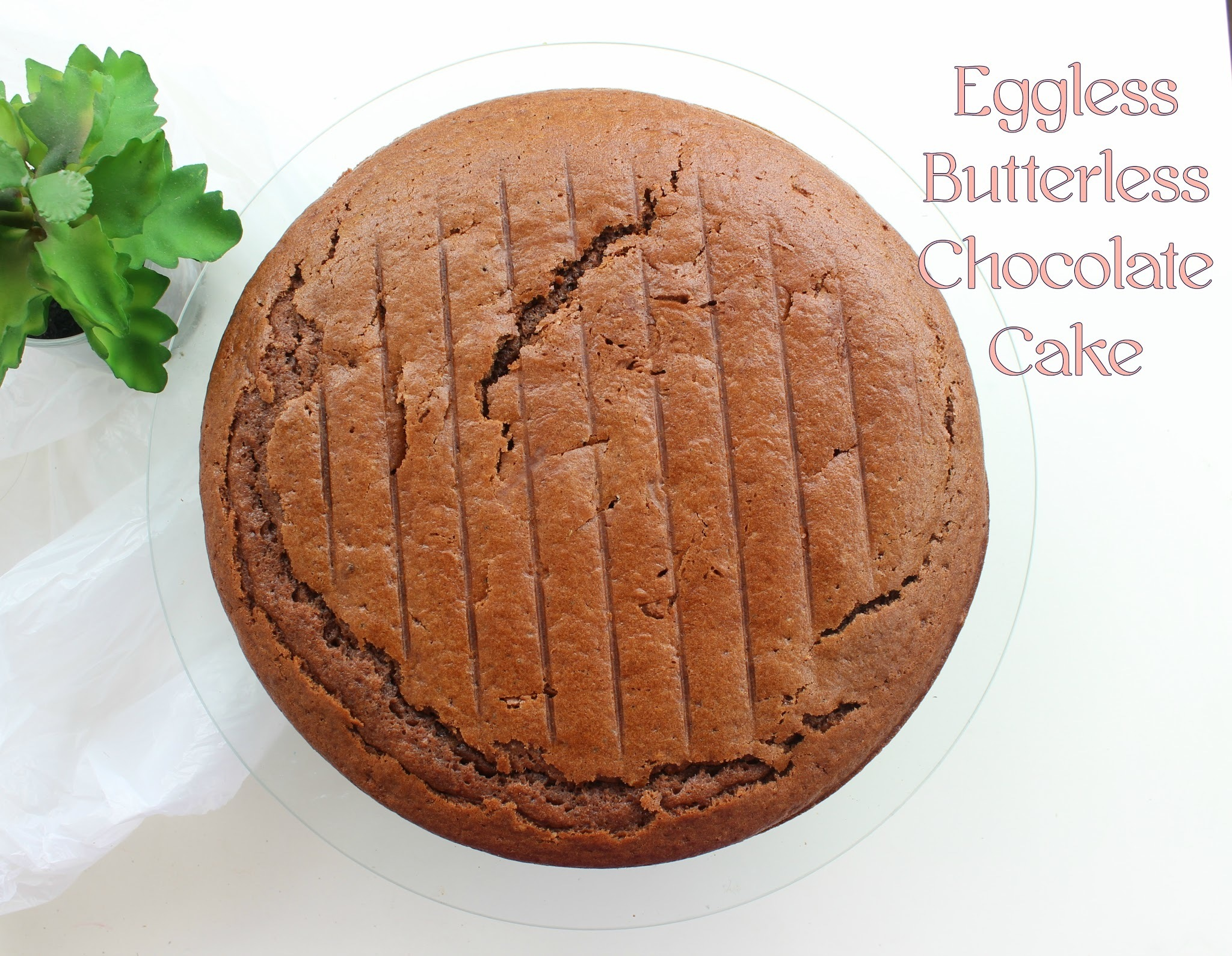 Eggless Butter less Chocolate Cake Recipe | Flavour Diary