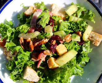 MULTI VITAMINS SALAD ! KALE, CRANBERRIES AND PECANS / SALADE SUPER-VITAMINÉE : CHOU KALE, CRANBERRIES,NOIX DE PÉCAN