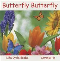 Butterfly Butterfly: Life Cycle Books