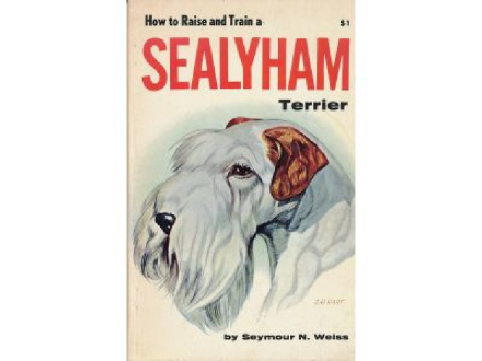 How to raise and train a Sealyham terrier