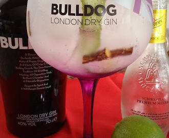 A Tasca do Gin - Bulldog (Perfect Serve 5)