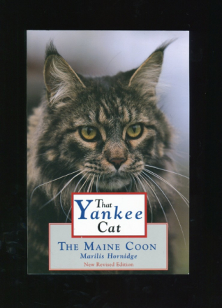 That Yankee Cat The Main Coon
