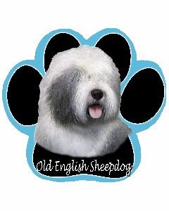 Musematte - Old english sheepdog