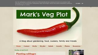 Mark's Veg Plot